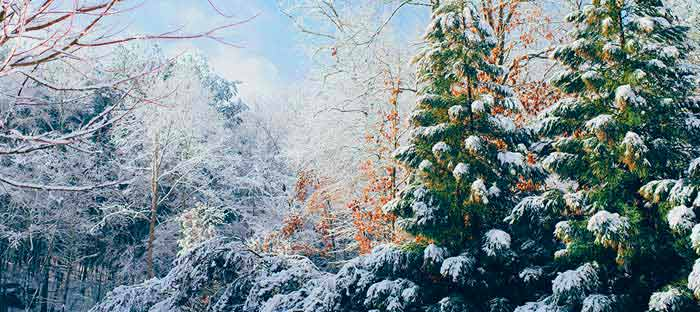 winter is a wonderful time to enjoy shopping, dining, and the wonderful sights in Bensalem, Bucks County PA