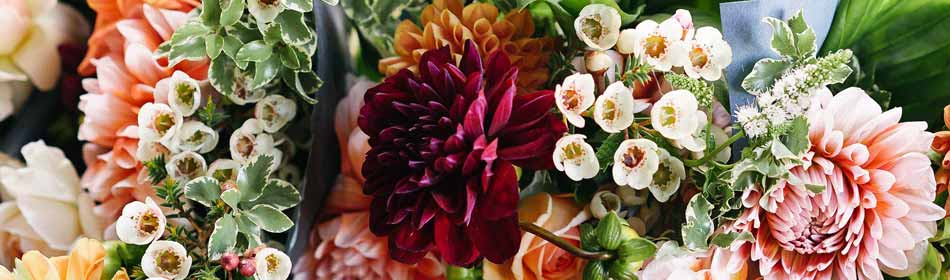 Florists, Floral Arrangements, Bouquets in the Bensalem, Bucks County PA area